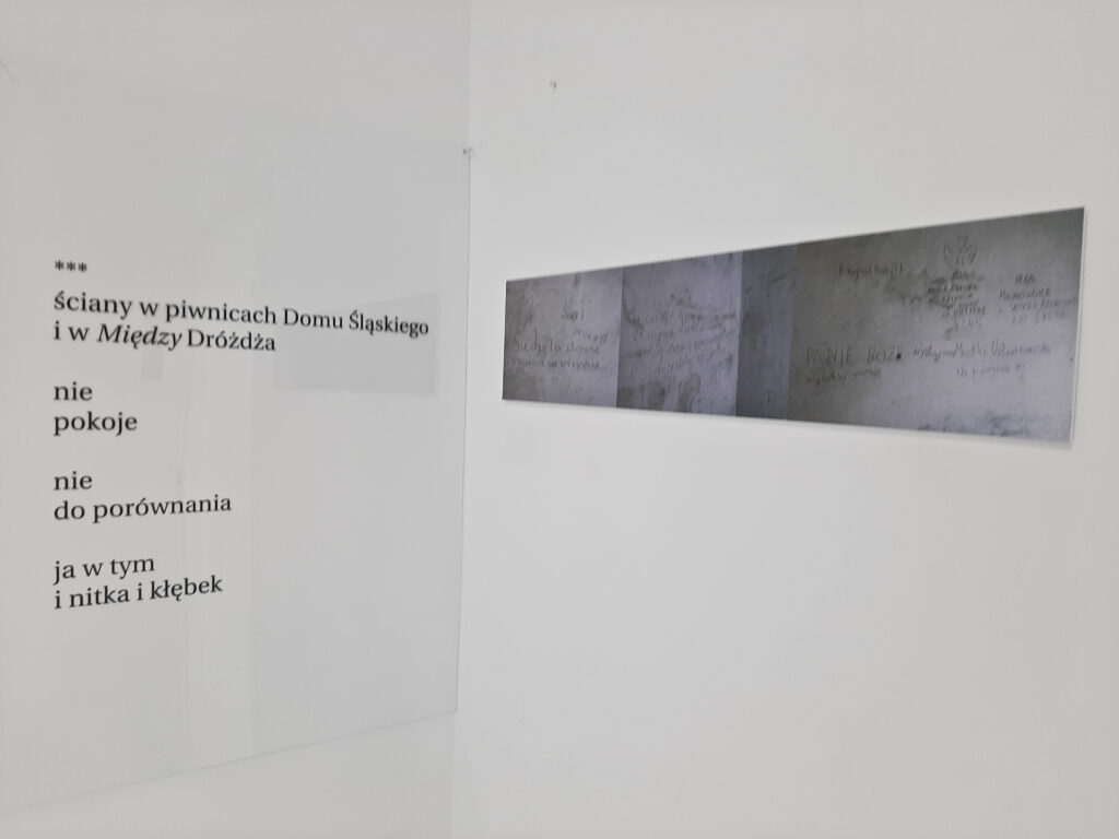 Praca Patryka Czarkowskiego